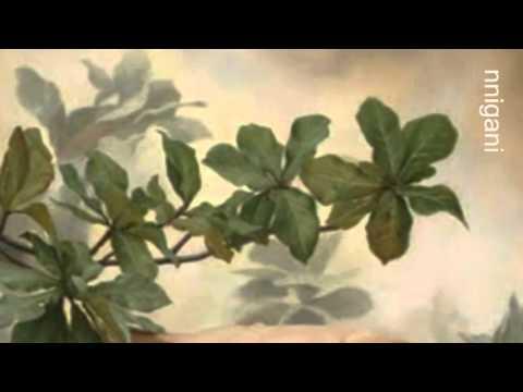 music Haris Alexiou-To Tango Tis Nefelis / Tango to Evora/