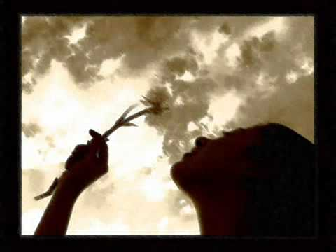 music «Μικρή πατρίδα» - Χαρούλα Αλεξίου